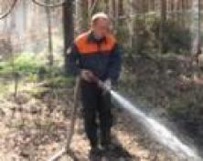 Лесной пожар в Килемарском районе достиг площади 1600 га