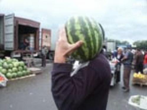 В столице Марий Эл бахчевые будут продаваться по особым правилам