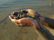 Санитарные врачи закрыли озеро Яльчик. Купаться и пить воду категорически запрещено