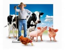 Йошкар-Ола начала готовиться к сельскохозяйственной переписи