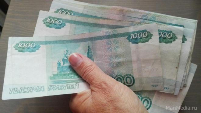Предпринимательница из Сернура не смогла подкупить сотрудника местной полиции