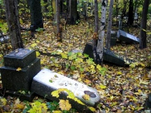 В правительстве Марий Эл решили заняться Марковским кладбищем