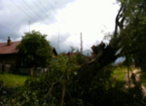 Кража электропроводов стоила жизни жителю Марий Эл