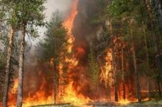 Пожароопасный сезон в Марий Эл начнется уже в конце апреля
