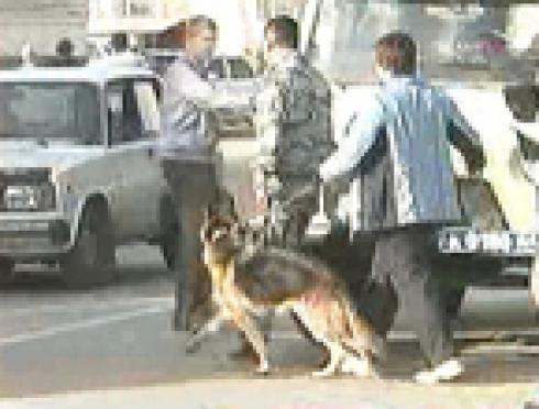 Йошкар-олинская средняя школа №4 (Марий Эл) второй раз за неделю подверглась лжеминированию