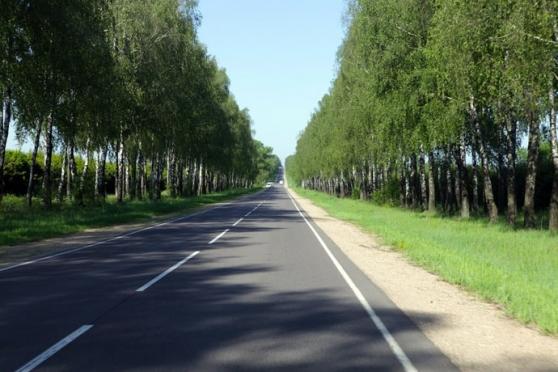 В Медведевском районе обустроят подъезды к поселению многодетных семей
