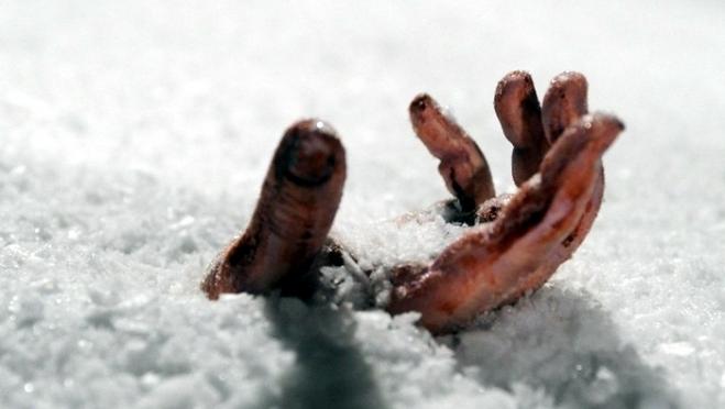 В Марий Эл в метель заблудились и  замёрзли люди