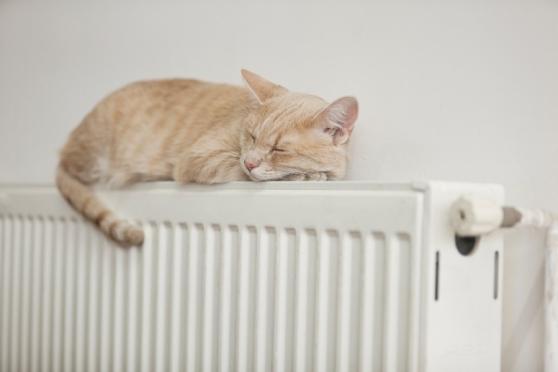 Отопление в домах йошкаролинцев отключат 1 мая