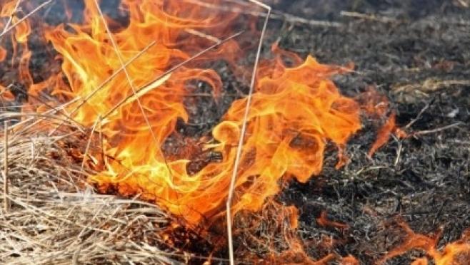 В Марий Эл начались пожары, причинами которых стали возгорания сухой травы