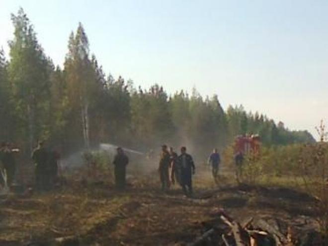 В лесах Марий Эл установлен 3 класс пожарной опасности