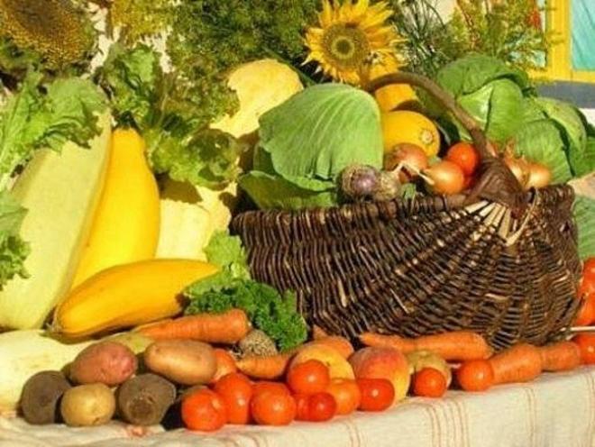 В столице Марий Эл открылась ярмарка местных производителей