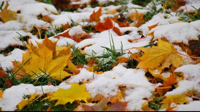 В воскресенье на Марий Эл обрушится первый снегопад