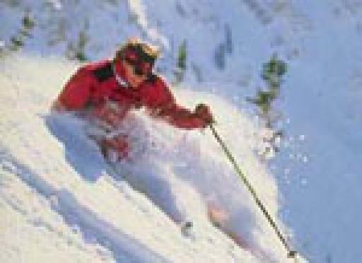 Экстремалы Марий Эл в середине лета решили прокатиться на горных лыжах