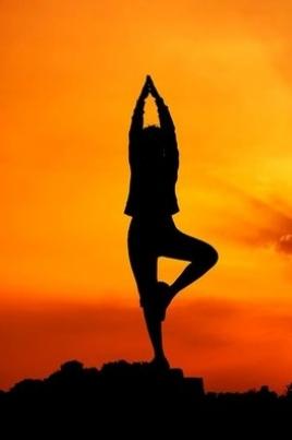 II-й Международный день йоги на озере Изумрудное постер