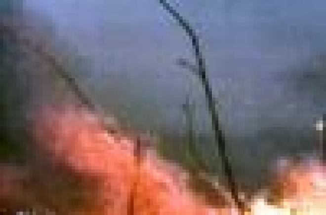 В 2007 году леса Марий Эл горят в 2 раза реже, чем в 2006