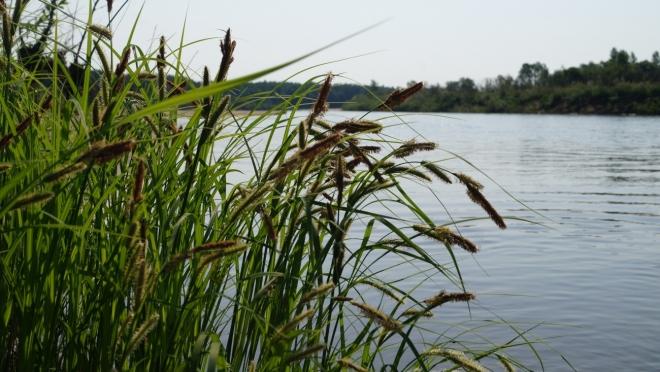 5 рек Марий Эл для идеального сплава