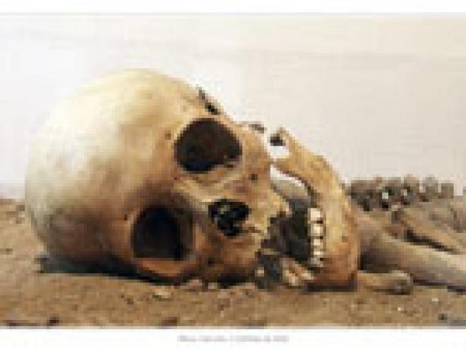 В центре столицы Марий Эл строители наткнулись на человеческие останки