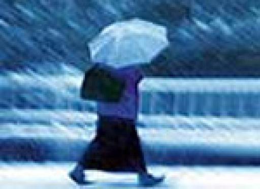 Дожди могут настигнуть Марий Эл уже к этим выходным
