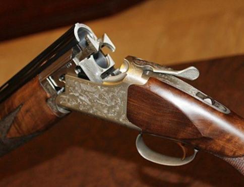 В Горномарийском районе обнаружили арсенал с оружием иностранного производства