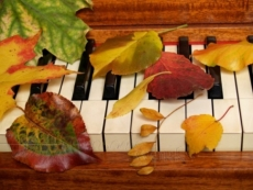 «Марийская осень» начнется в Йошкар-Оле