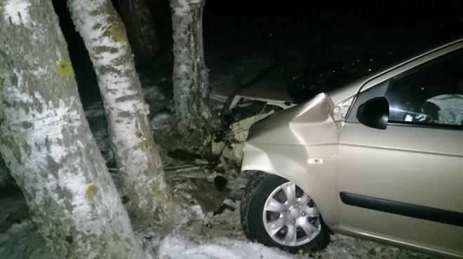 В Марий Эл иномарка вылетела в кювет и врезалась в дерево