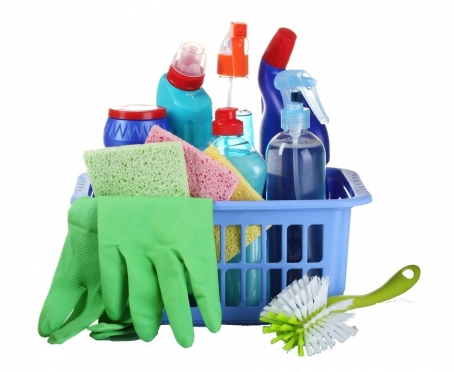 В России запретили моющие средства «Ушастый нянь» и «Лотос»