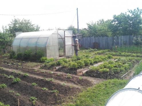 В Марий Эл переписано больше половины частных сельхозугодий