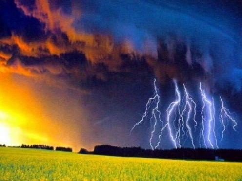 На смену засушливой, жаркой погоде идут дожди с грозами