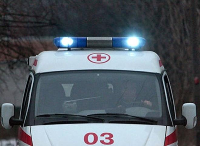 В Марий Эл на федеральной трассе «Газель» сбила отца с семилетним сыном