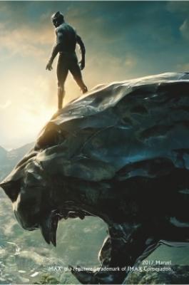 Премьерный показ фильма «Черная Пантера»