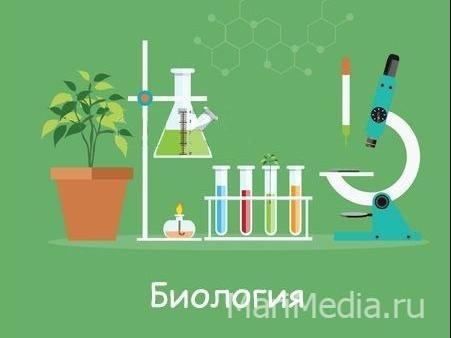 Занятия по биологии в группах и индивидуально, подготовка к ОГЭ и  ЕГЭ по биологии, ЮНИСКУЛ