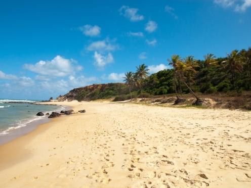 Пляжный песок населен бактериями