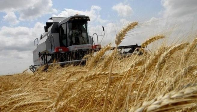 Уборка зерновых стартовала в Республике Марий Эл