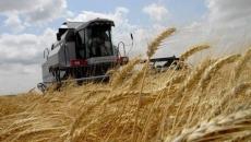 Маристат фиксирует рост сельскохозяйственного производства в регионе