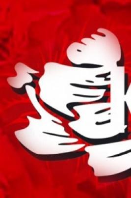Красная Гвоздика постер