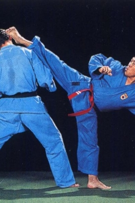 Фестиваль боевых искусств постер