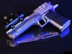 Владельцев гражданского и служебного оружия ждут в Центре лицензионно-разрешительной работы МВД