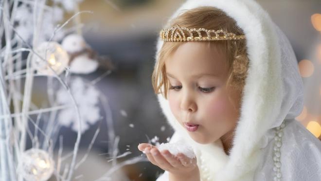 В Йошкар-Оле появится своя «Снежная Принцесса»