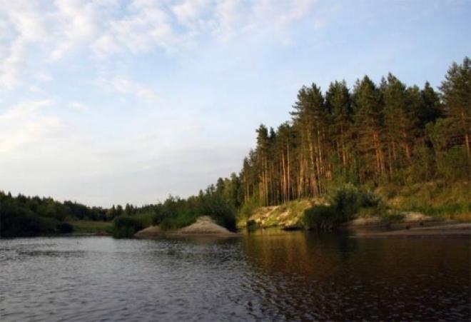 Туристам понадобятся спецпропуски, чтобы попасть в леса Марий Эл в период пожароопасного сезона