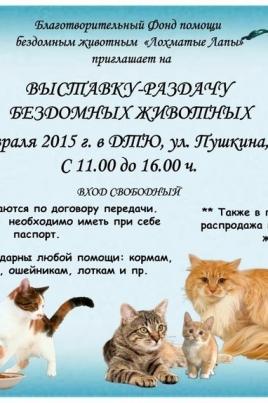 Выставка-раздача бездомных животных постер