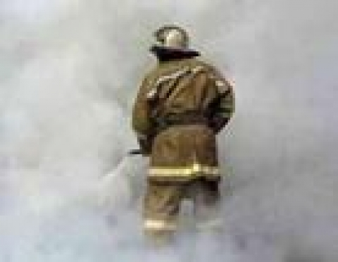 323,5 га леса сгорело в Марий Эл в выходные дни
