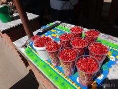 На стихийных рынках Йошкар-Олы появился природный антиоксидант