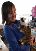 Девять бездомных кошек обрели сегодня своих хозяев