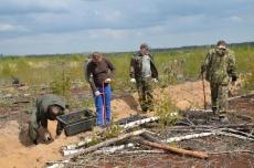 Жители Марий Эл займутся лесовосстановлением