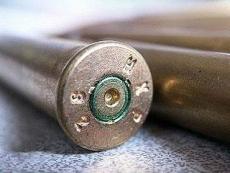В Марий Эл зарегистрировано более 15 тысяч владельцев гражданского оружия