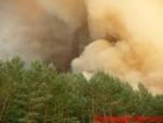 В Марий Эл горит лес на 10-ом км федеральной трассы «Вятка» (Кокшайский тракт)