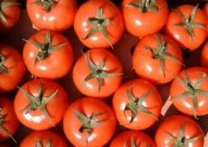 Прокуратура нашла в Волжске запрещенные турецкие помидоры