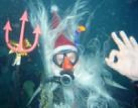 Дайверы Марий Эл встретили Новый год на дне йошкар-олинского бассейна