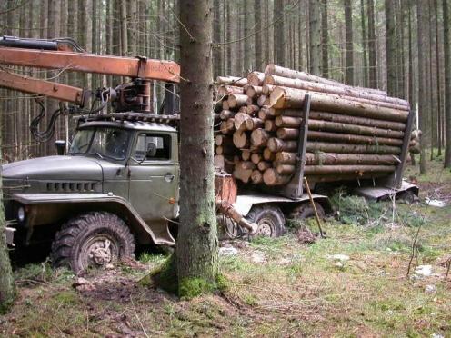 Водитель лесовоза попытался подкупить инспектора ДПС