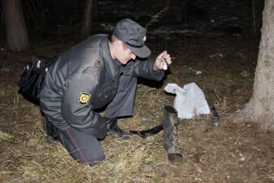 В Йошкар-Оле нашли труп женщины, искусанной собаками